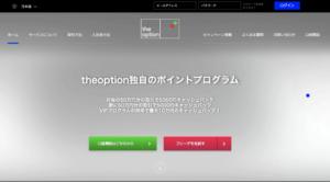 the option